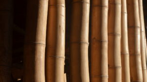 Guadua-Bambus